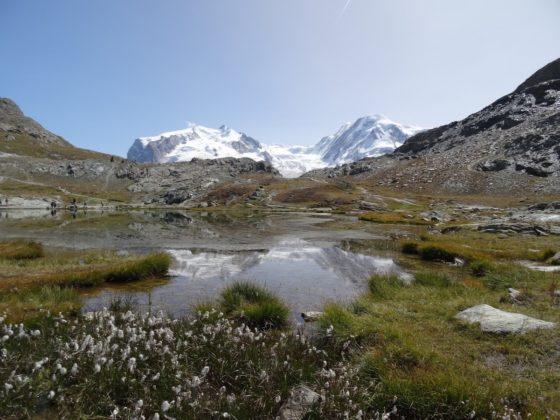 Das Monte-Rosa Massiv spiegelt sich im Riffelsse unterhalb des Gornergrats in Zermatt