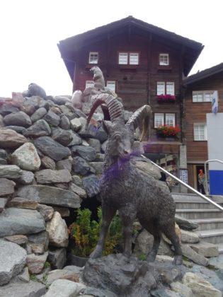 Steinbock-Bronce in Zermatt