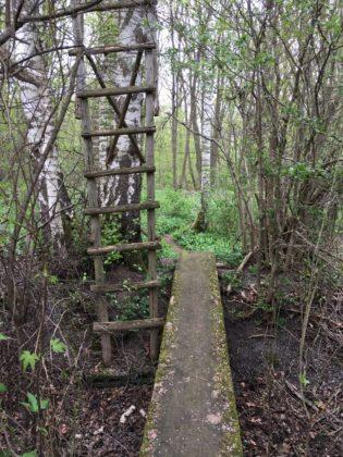Abzweig am Naturlehrpfad Riedholz