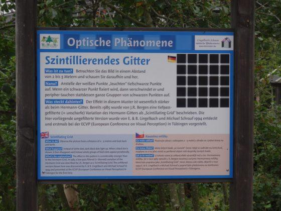 Waldwipfelweg in Sankt Englmar - Szintillierendes Gitter