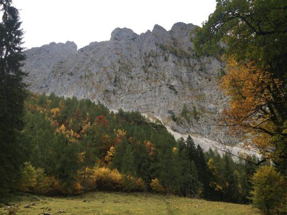 Abstieg: Wimbach - Hochalm