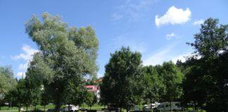 Wohnmobilstellplatz Heiligenstadt bei Bamberg (Oberfranken)