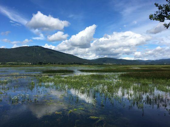 Zirknitzer See - Cerkniško jezero - Slowenien