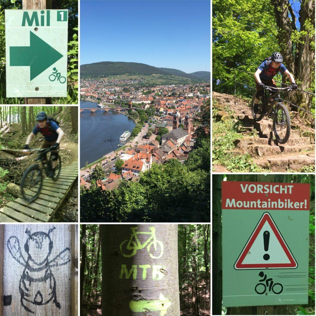 Mountainbiken Miltenberg