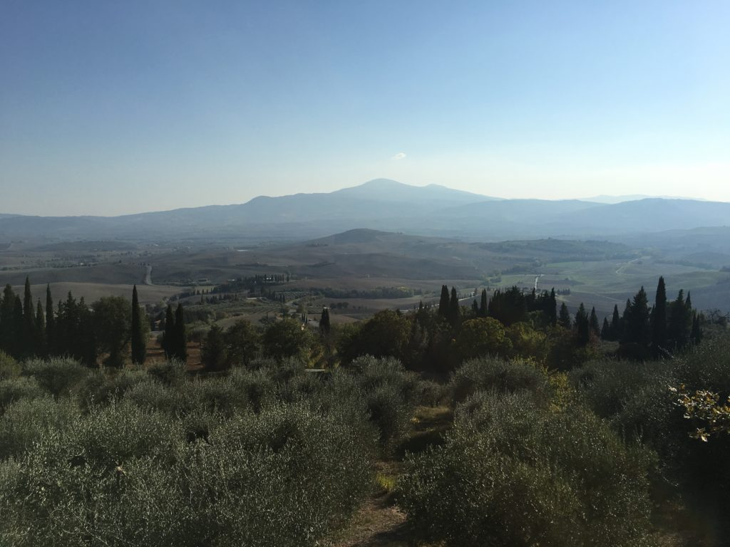 Blick ins Orcia Tal