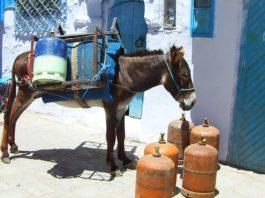 Sicherer Transport von Gasflaschen